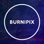View stats for BurniPix