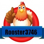 View stats for rooster3746