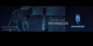 Profile banner for wolfangkillers