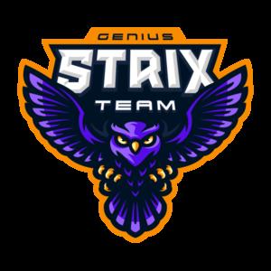 Strix_team