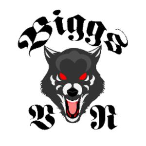 BiggsVR Logo