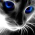 View Blueyescat's Profile