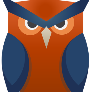NSGJesse Logo