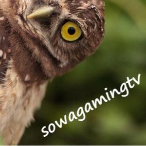 sowagamingtv Logo