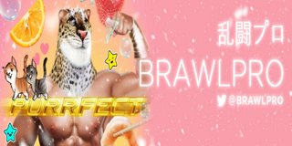 Profile banner for brawlpro_