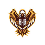 View stats for blackhawkgamiing