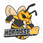 View stats for Hornisse86