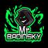 mr_badinsky