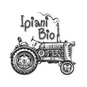 ipianigaming Logo