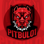 View stats for pitbul01