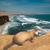 View Sea_Ferret's Profile