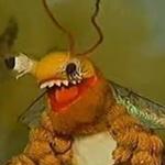 BeePolaro