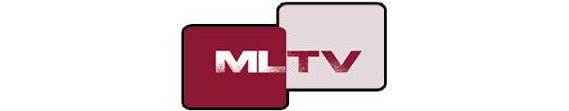 image: 2mlt-channel_header_image-3b381543abe70dfa-640x125