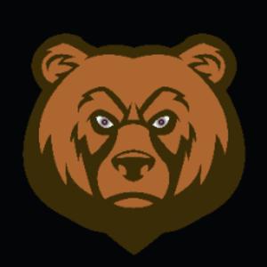 NomadBear1 Logo