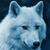 View wolfbain6's Profile