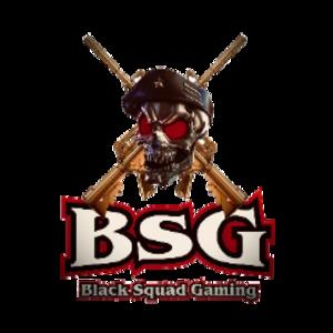 bsg_ford81 Logo