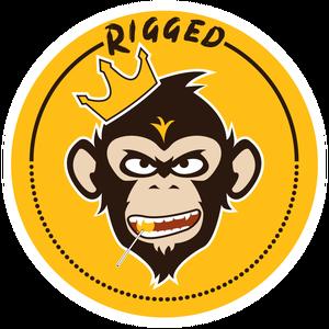 Rigged101 Logo