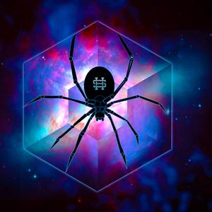 Holispider Logo