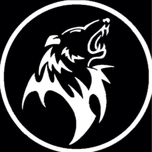 OokamiDavid Logo