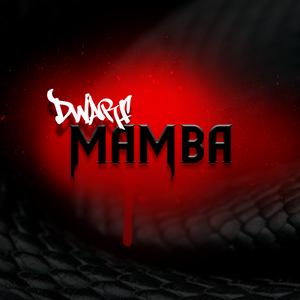 Dwarf_Mamba
