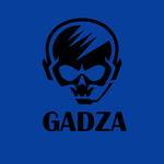 View stats for gadzzaa