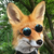 View FeedbackFox's Profile