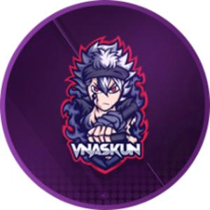 vNaskun Logo