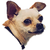 avatar for laynepavoggi