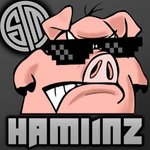 View stats for TSM_Hamlinz