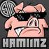 Tsm_hamlinz