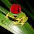 View froggyfez's Profile