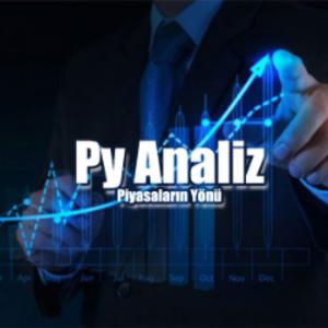 Pyanaliz Logo
