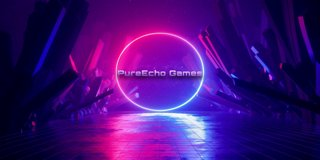 Profile banner for pureechogames