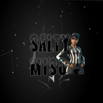 View stats for saltymiso