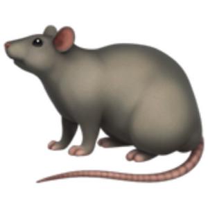 rat_xd Logo