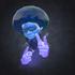 View qm_gamer's Profile