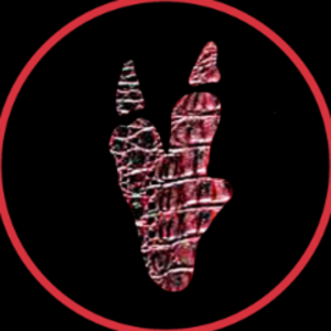 Raptonaut Logo