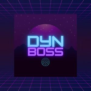 DyNBoss12