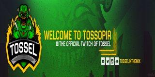 Profile banner for tossel