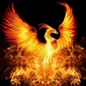 View phoenixplayz's Profile