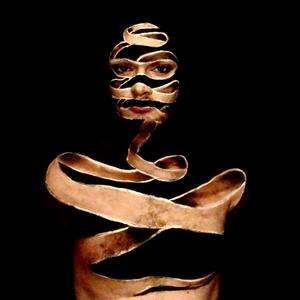 xHerrNico Logo