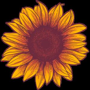 Sonneflower Logo