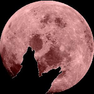 lunalouverouge Logo