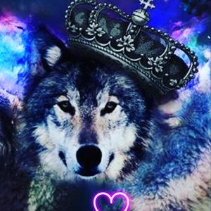 heartofawolfe26 Logo