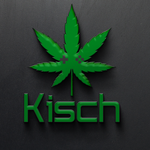 View stats for kischgaming