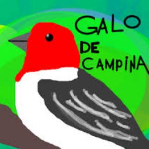 GaloCampina2017 Logo