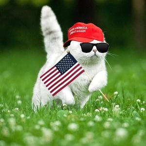 View patrioticpuss's Profile