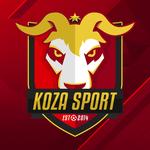 View stats for KozaSport