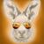 avatar for chrisgoroo