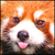 View lizard_png's Profile